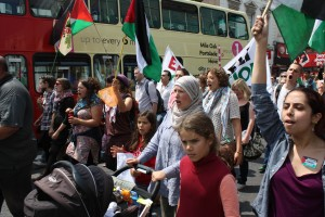 Gaza demo Brighton-140712-548